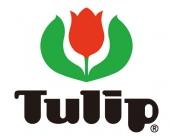 Tulip Naalden