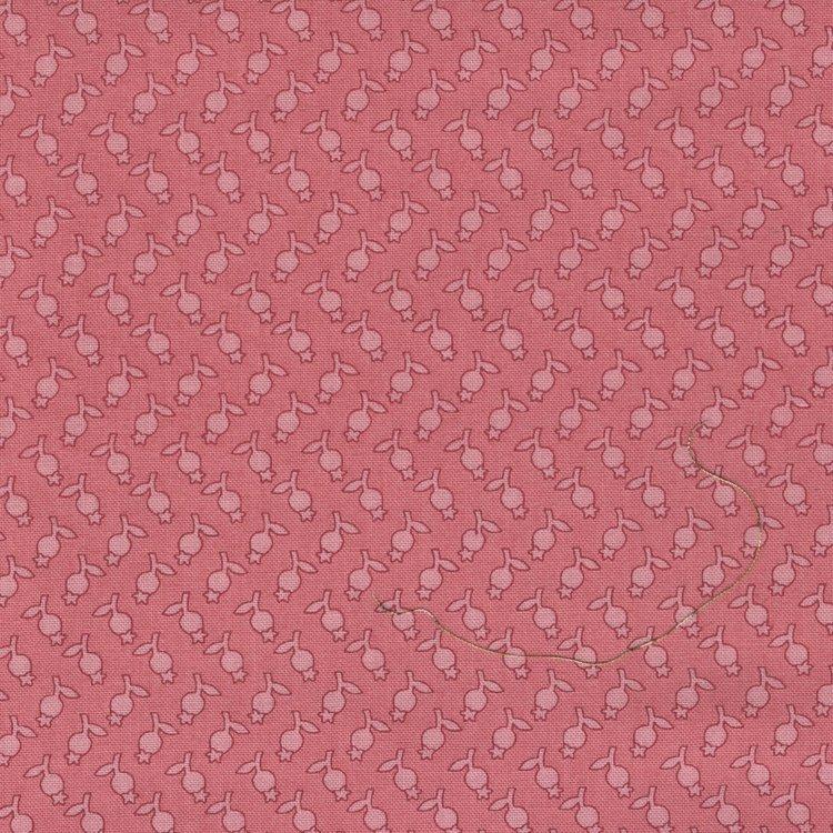 Andover Sequoia Edyta Sitar roze werkje