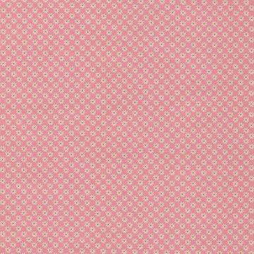 Andover Katie Jane roze met groen puntje