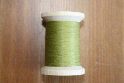 YLI 009 lente groen